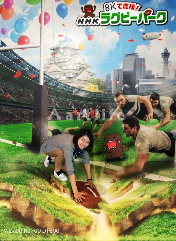 ラグビーワールドカップ2019 NHK