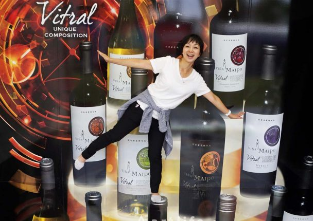 ビニャ マイポ 社の チリワイン「ビトラル」