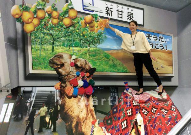 東京駅 食のみやこ鳥取県 梨「新甘泉」